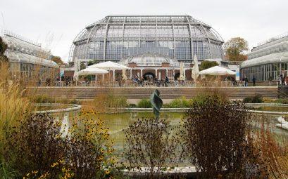 Balade au jardin botanique de Berlin
