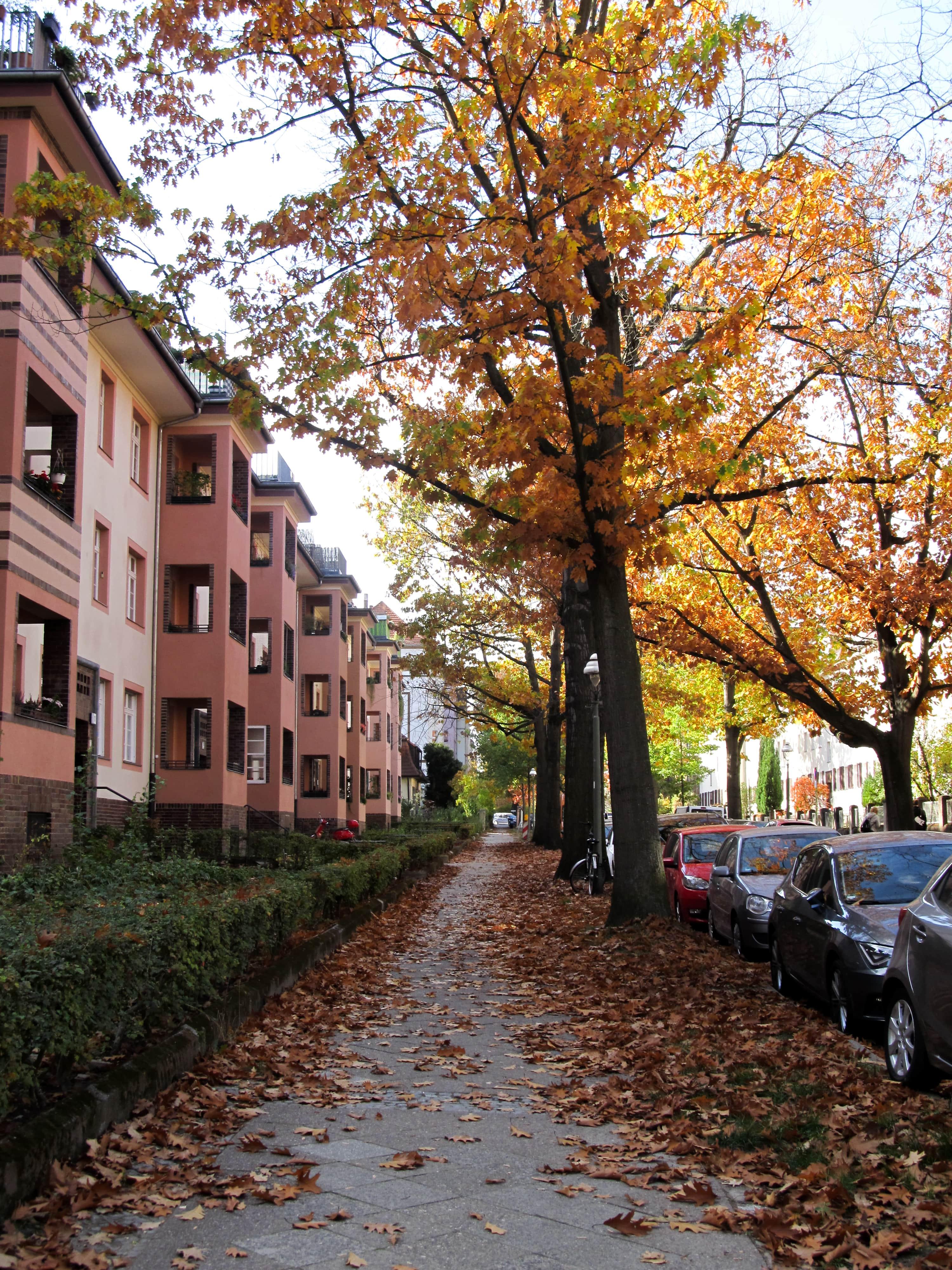 Jardin botanique : En route pour Berlin avec un nouveau city-guide sur le blog Unterwegs.