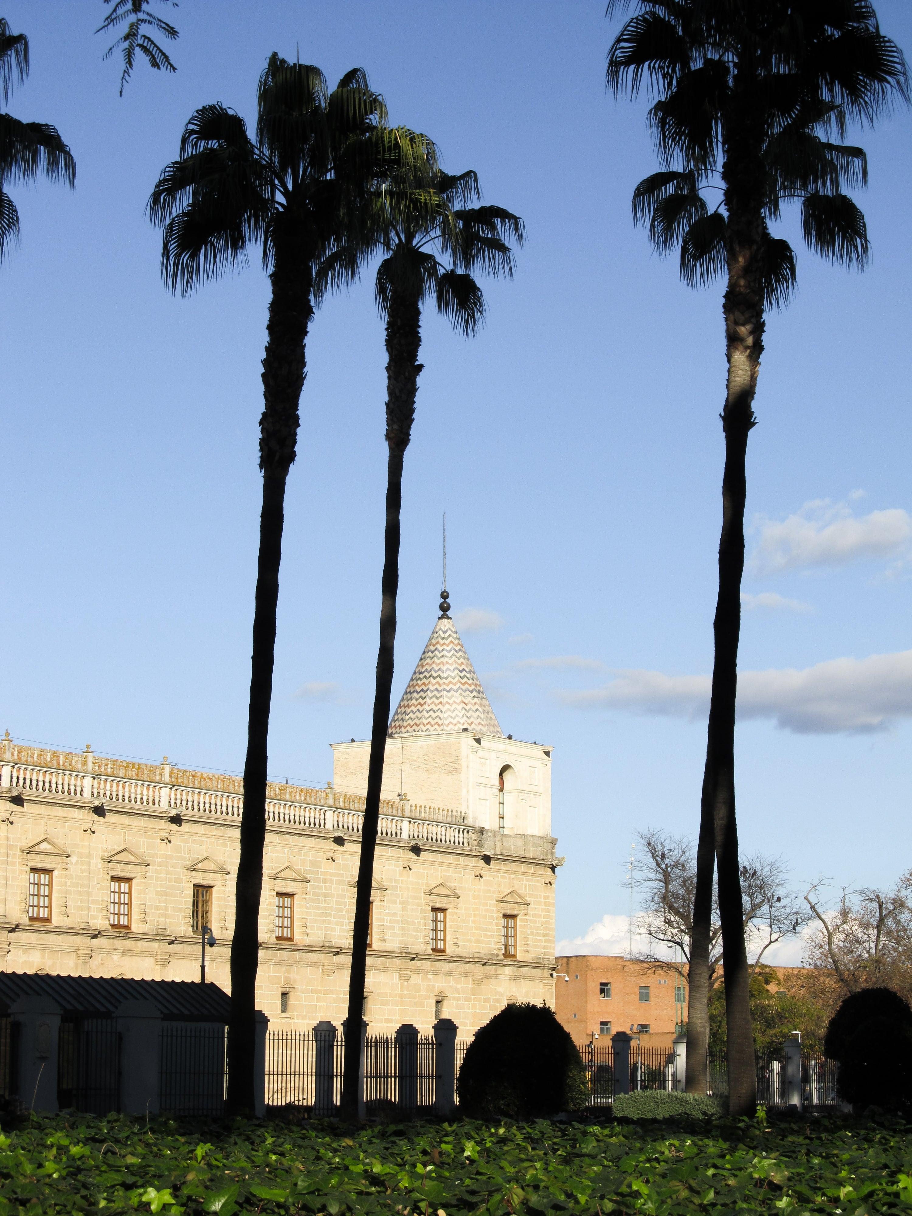 Parlement : Partez à Séville à la découverte des quartiers Santa Cruz et La Macarena en plein mois de janvier.