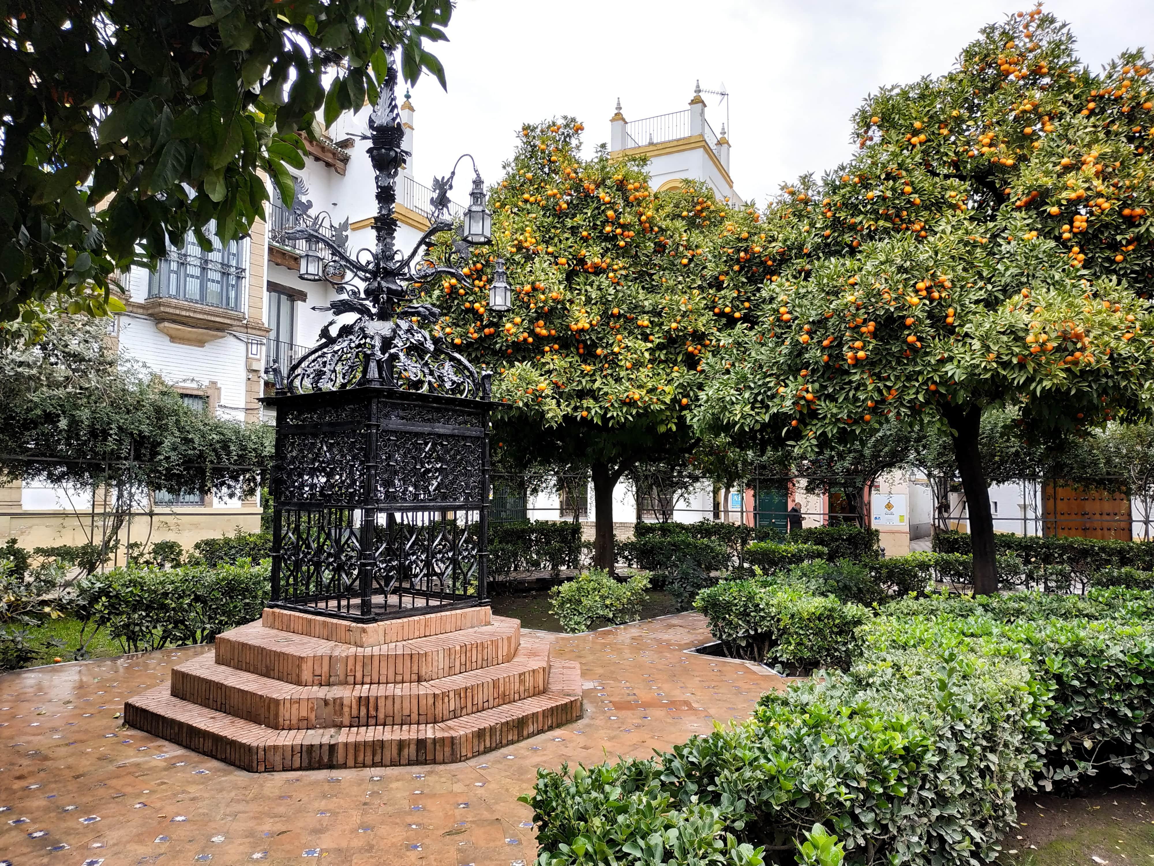 Santa Cruz : Partez à Séville à la découverte des quartiers Santa Cruz et La Macarena en plein mois de janvier.