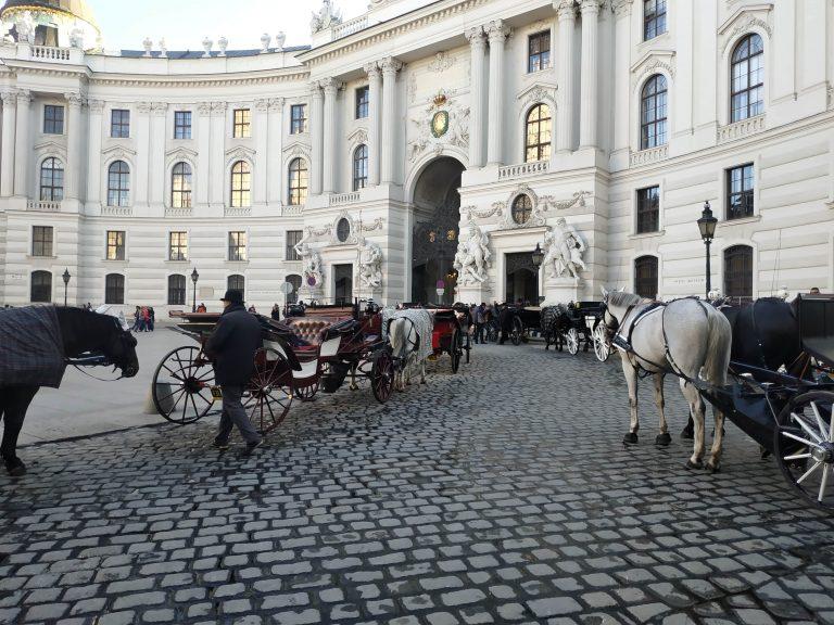 Les 5 incontournables pour visiter Vienne