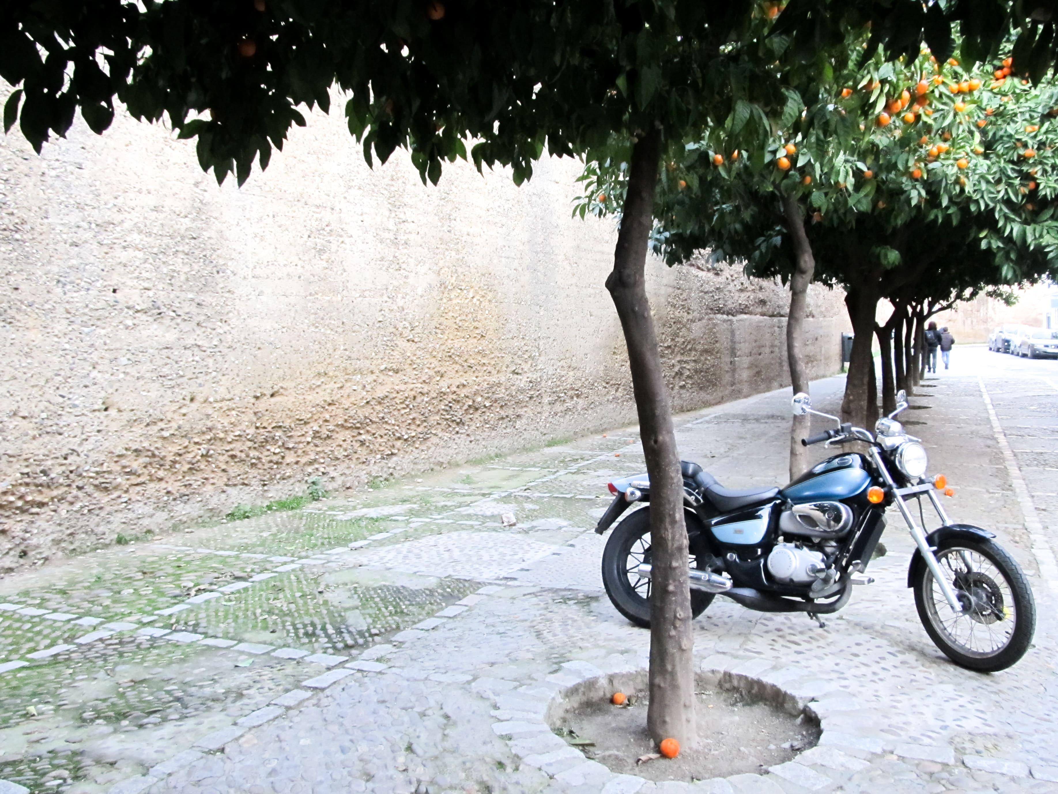 La Macarena : Retrouvez ici toutes les informations pour organiser votre long week-end à Séville, en Andalousie.