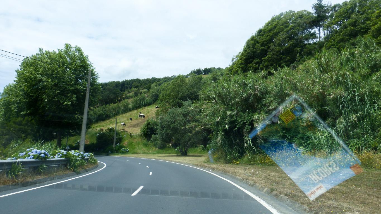Road trip Açores : Les routes de