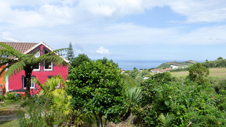 Voiture, logement, avions, ... : découvrez dans cet article comment organiser un road trip aux Açores sur l'île de São Miguel.