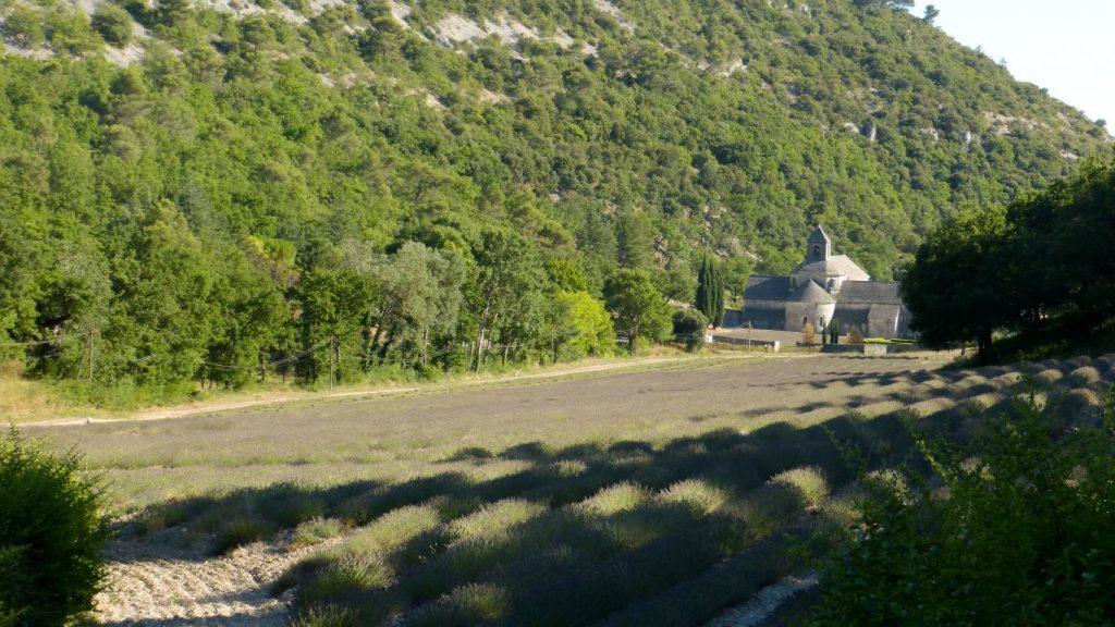 Abbaye de Sénanque : Découvrez dans cet article 5 idées de visite lors de vacances dans le Vaucluse, au nord de la Provence.
