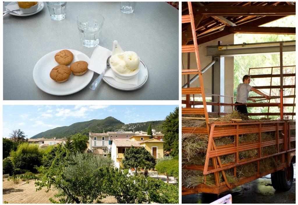 Nyons : Découvrez dans cet article 5 idées de visite lors de vacances dans le Vaucluse, au nord de la Provence.