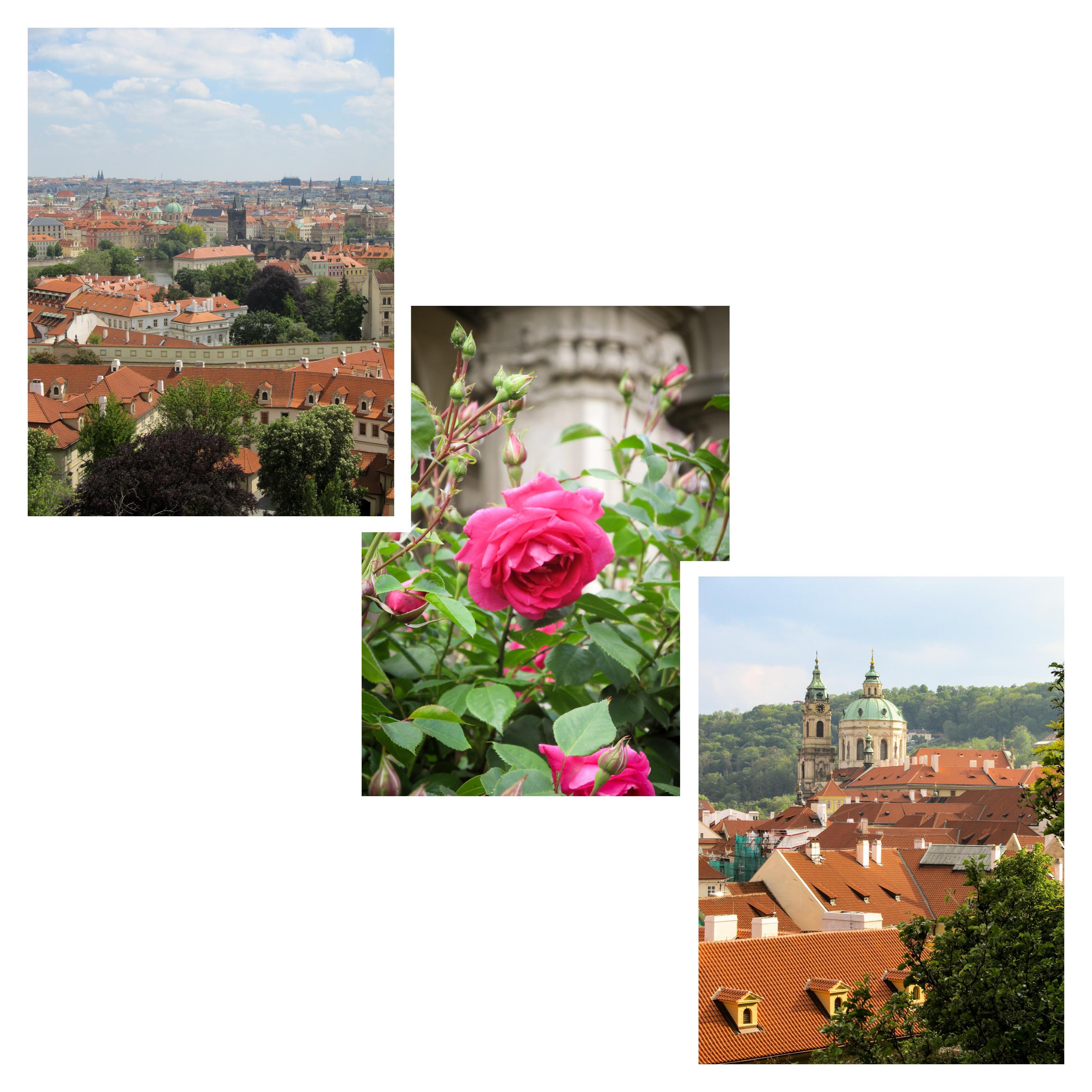 Découvrez à travers ce récit notre chouette week-end à Prague. Vous trouverez dans cet article nos visites, restaurants, et conseils pour organiser votre séjour dans la capitale de République tchèque.