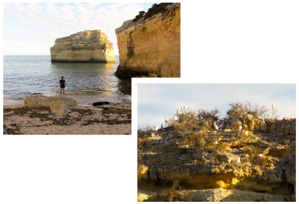 Praia do Barranqhino | Découvrez dans cet article les plus beaux endroits, notamment les plages et villages, de la côte sud de l'Algarve au Portugal.