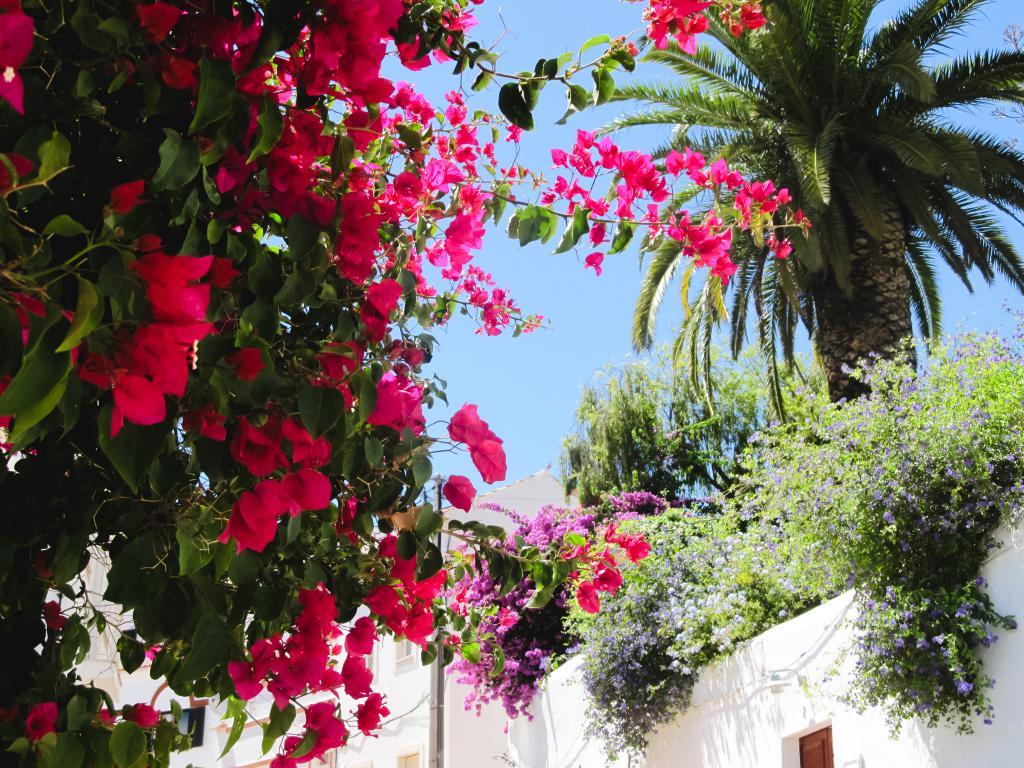 Silves | Découvrez dans cet article les plus beaux endroits, notamment les plages et villages, de la côte sud de l'Algarve au Portugal.