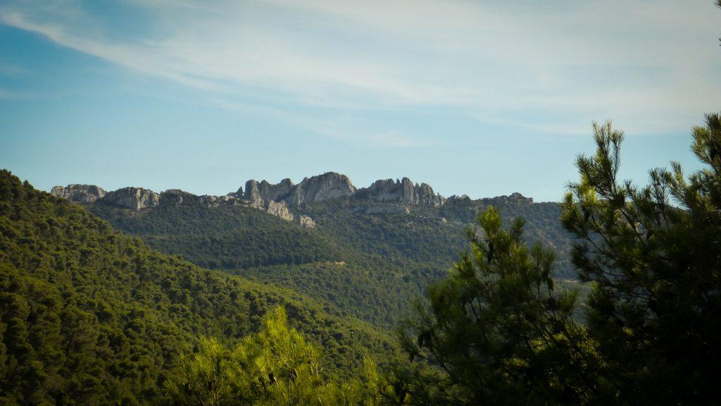 Dentelles de Montmirail | Que faire et que voir en Provence dans le Vaucluse ?
