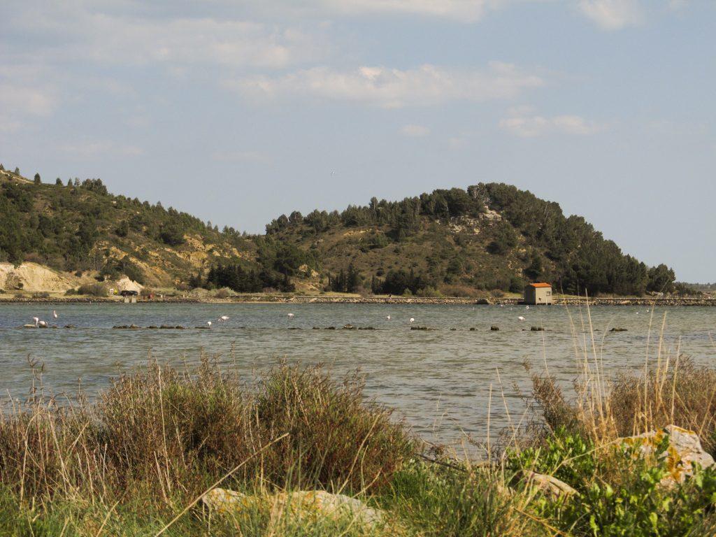 Etangs Peyriac-de-Mer