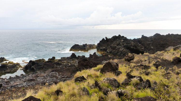 Piscine naturelle Ferrario Açores Sao Miguel